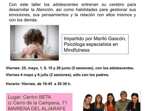 Taller Mindfulness para adolescentes mayo/julio 2018