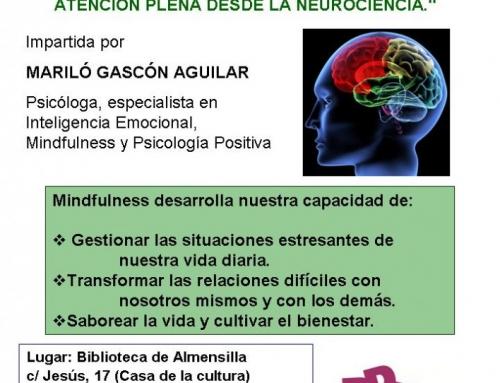 CONFERENCIA BIBLIOTECA DE ALMENSILLA/3 DE DICIEMBRE 2014