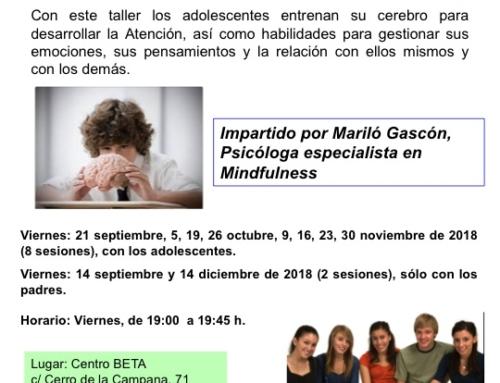 TALLER MINDFULNESS para adolescentes. Del 14 septiembre al 14 diciembre de 2018