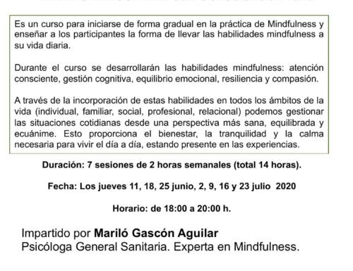 """Curso online EN DIRECTO """"MINDFULNESS: VIVIR CON CONSCIENCIA PLENA"""". Del 11 de junio al 23 de julio de 2020"""