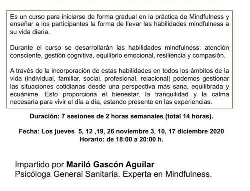 Curso online MINDFULNESS: Vivir con consciencia plena. Del 5 noviembre al 17 diciembre 2020