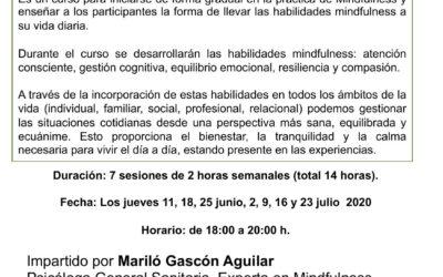 Curso online EN DIRECTO «MINDFULNESS: VIVIR CON CONSCIENCIA PLENA». Del 11 de junio al 23 de julio de 2020