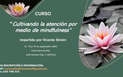 Curso «Cultivando la atención por medio de Mindfulness», impartido por Vicente Simón en Sevilla, del 17 al 19 de septiembre 2021.